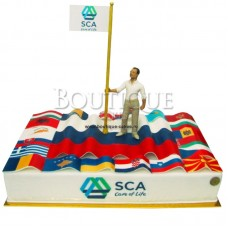 """Торт """"SCA care of life"""""""